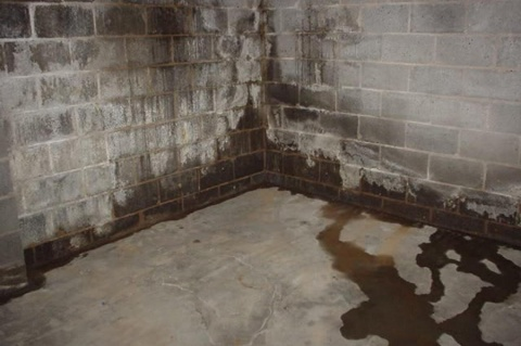 How Do I Get Rid of Moisture in My Basement Picture